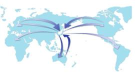International Procurement