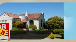 Real Estate Procurement